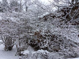 風景 - No.407147
