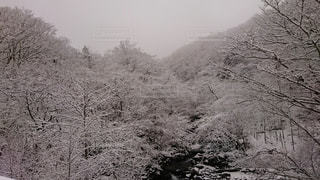 No.408146 風景