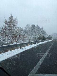 雪 - No.374679