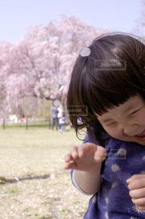 春の写真・画像素材[382827]