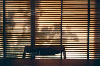 木漏れ日の写真・画像素材[990866]