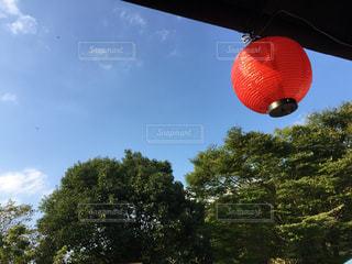 夏の写真・画像素材[373125]