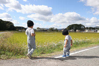草の中に立っている小さな男の子の写真・画像素材[1647830]