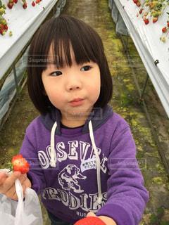 子供の写真・画像素材[373769]