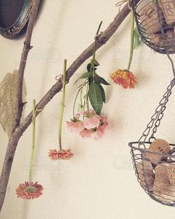 室内装飾の写真・画像素材[373687]