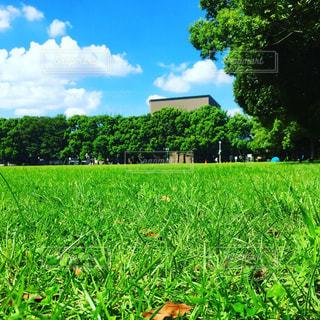 公園 - No.374340