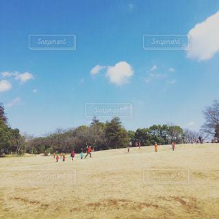 公園の写真・画像素材[374456]
