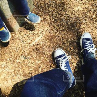 公園の写真・画像素材[374498]
