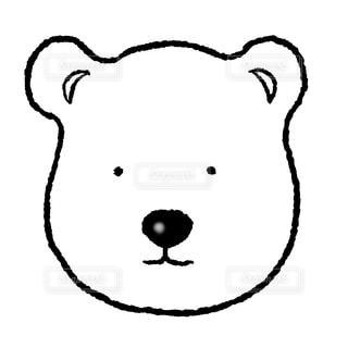 白クマの写真・画像素材[1473524]