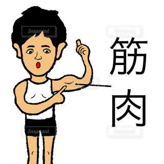 筋肉の写真・画像素材[1554470]