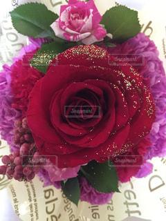 花の写真・画像素材[1625251]
