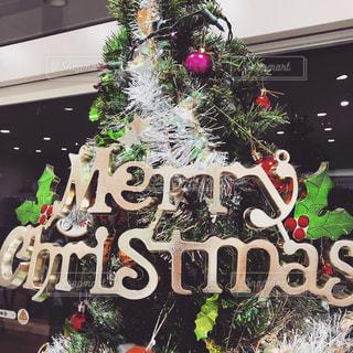 メリークリスマスの写真・画像素材[1636204]