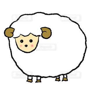 羊の写真・画像素材[1699995]