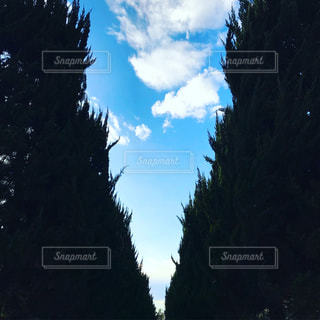 Vの空の写真・画像素材[1702878]