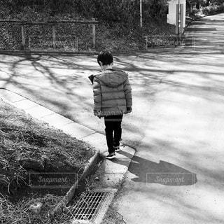 お散歩の写真・画像素材[1795561]