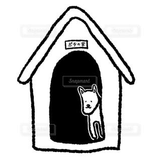 犬小屋の写真・画像素材[1874960]