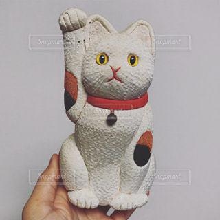招き猫の写真・画像素材[2048744]