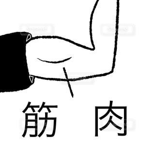 筋肉の写真・画像素材[2179305]
