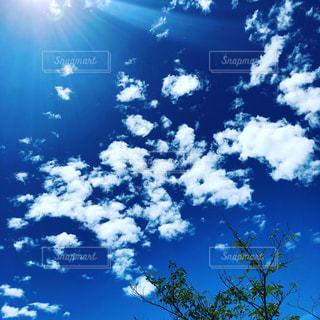 夏の青空の写真・画像素材[2315225]