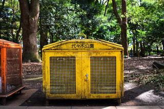代々木公園の写真・画像素材[2454424]