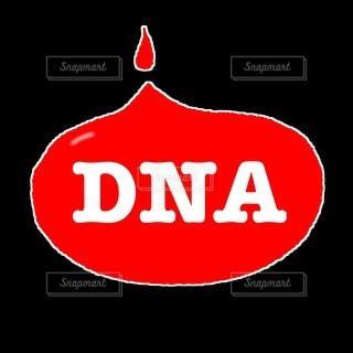 DNAの写真・画像素材[3162153]