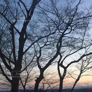 風景 - No.374171