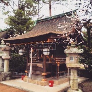 風景 - No.30279