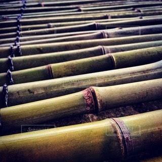 竹の写真・画像素材[30741]