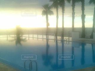 プールの写真・画像素材[376094]