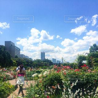公園 - No.666032