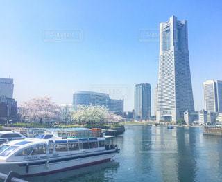 桜とランドマークタワーの写真・画像素材[1093131]