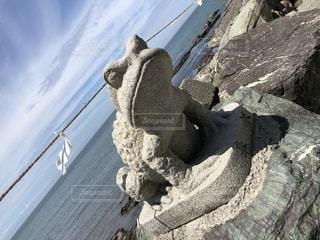 岩の上に座っているカエルの写真・画像素材[2507548]