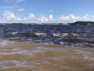 海の写真・画像素材[571258]
