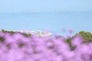 海の写真・画像素材[573591]