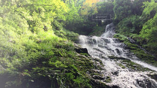 滝の写真・画像素材[646723]