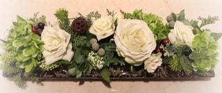 花の写真・画像素材[689086]
