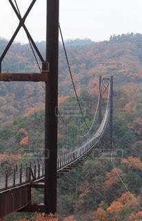 吊り橋の写真・画像素材[927069]
