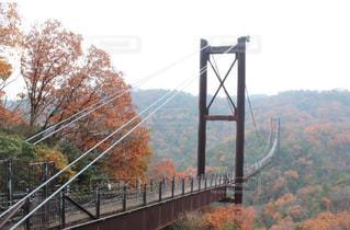 吊り橋の写真・画像素材[927112]
