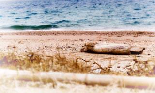 砂浜のビーチの写真・画像素材[1058099]