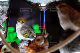近くにワイングラスと小鳥の飾りものの写真・画像素材[1088820]