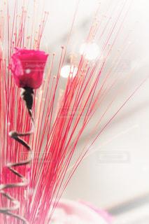ピンクの花で一杯の花瓶の写真・画像素材[1107841]