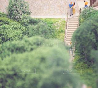 庭園の人々 のグループの写真・画像素材[1108032]