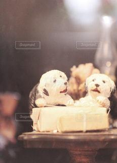 ソファの上に座っている犬の写真・画像素材[1108037]