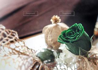 近くの花のアップの写真・画像素材[1108066]