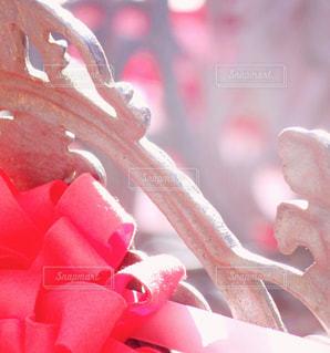 近くに赤い花のアップ - No.1108067