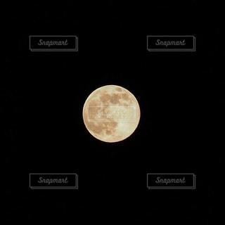 月の写真・画像素材[538031]