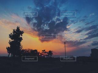 夕焼けと街灯と木の写真・画像素材[1081606]