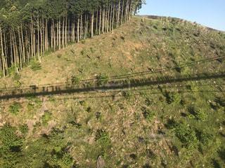 緑豊かな緑の丘陵に映る橋を渡る人の影の写真・画像素材[1081611]