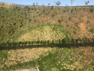 山場に映る大きな橋の影の写真・画像素材[1081614]