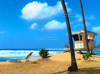 海の写真・画像素材[384592]